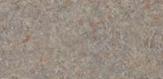 Bronze Legacy 4656-60 (XA) R