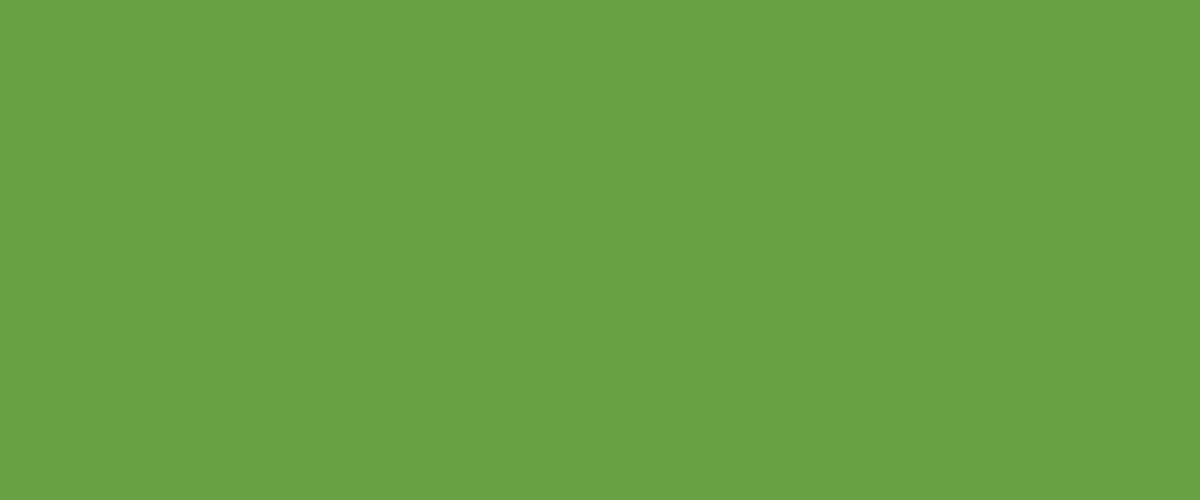 Green Apple 8E